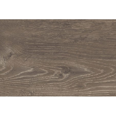 Clayborne oak