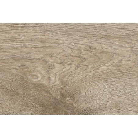 Stockholm oak